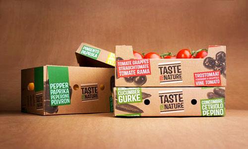 جعبه مقوایی میوه با جنس ای فلوت