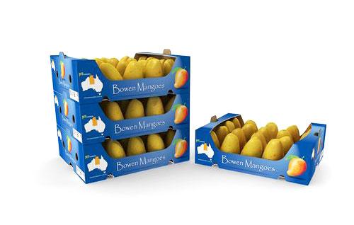 جعبه مقوایی میوه با جنس بی فلوت