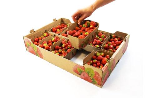 جعبه منقسم دار میوه ای فلوت